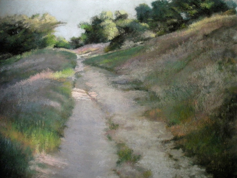 Into The Light 19 x 25 Pastel on sanded paper Anita Stoll