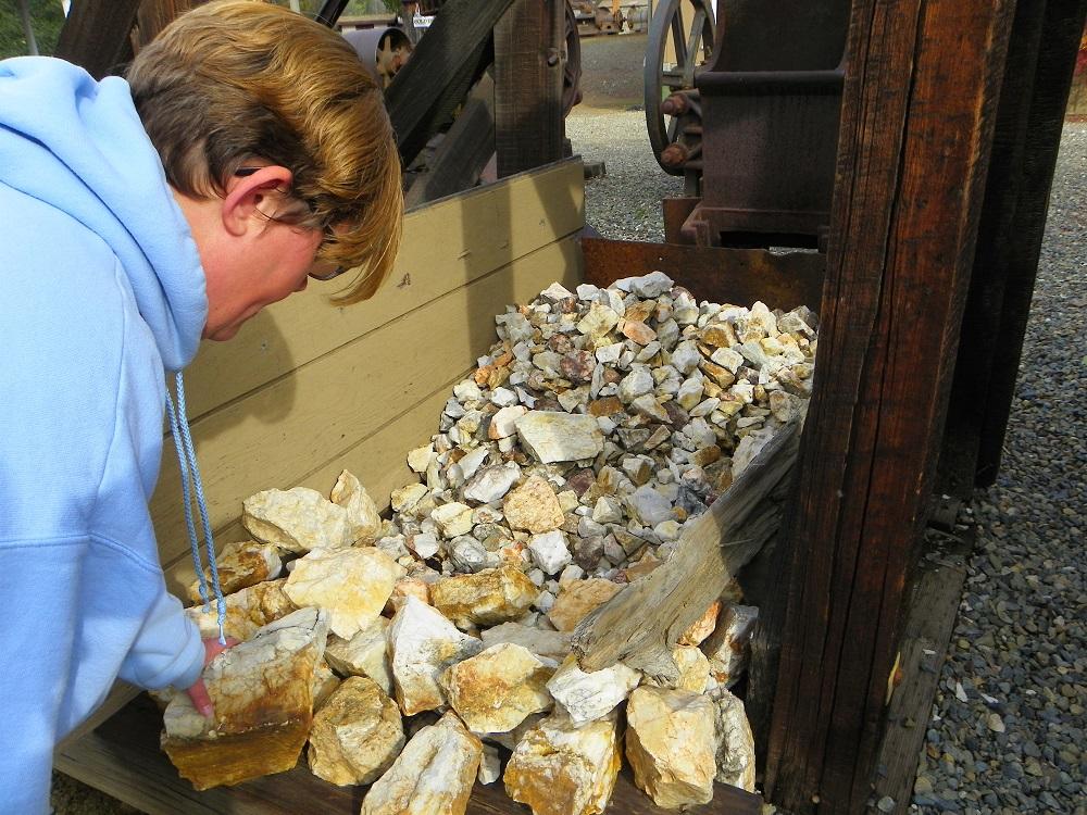 Tamara examines ore in Mariposa Museum 5,000 lb stamp mill - photo by Kellie Flanagan - 2014