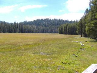 Scenic Byway Tour Meadow Photo