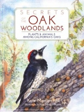 Secrets of the Oak Woodlands - Plants and Animals Among Californias Oaks - by Kate Marianchild and Ann Meyer Maglinte