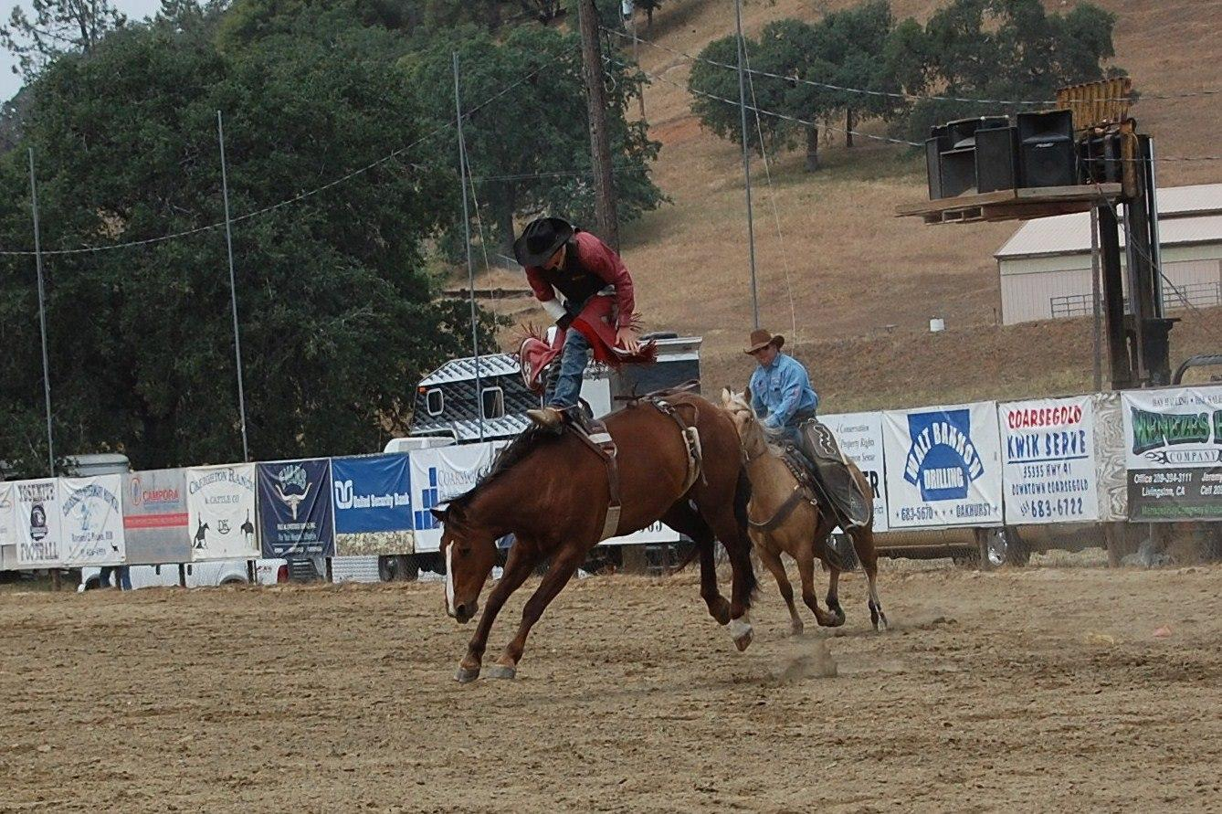 Bareback bronc 4 - photo courtesy of Tammi Kudra Edmonds
