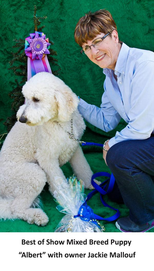 Best of Show Mixed Breed Puppy Albert with owner Jackie Mallouf