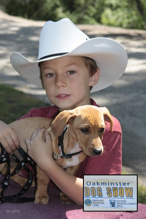 Best in Show Mix Breed Puppy -Mitchell Lewis with dog Lucky - photo by Jackie Mallouf