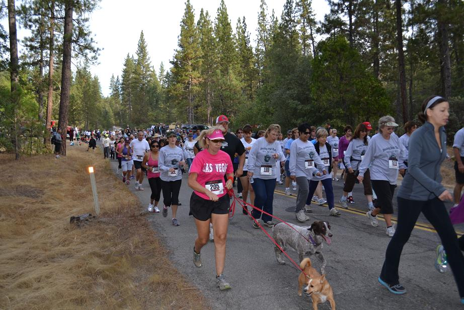 Smokey Bear Running with Dogs 9-22-12